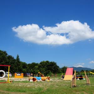 ハンドラーの為のフィジカルトレーニングセミナーin広島開催します